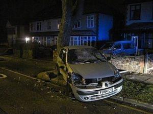 Dead Renault Clio