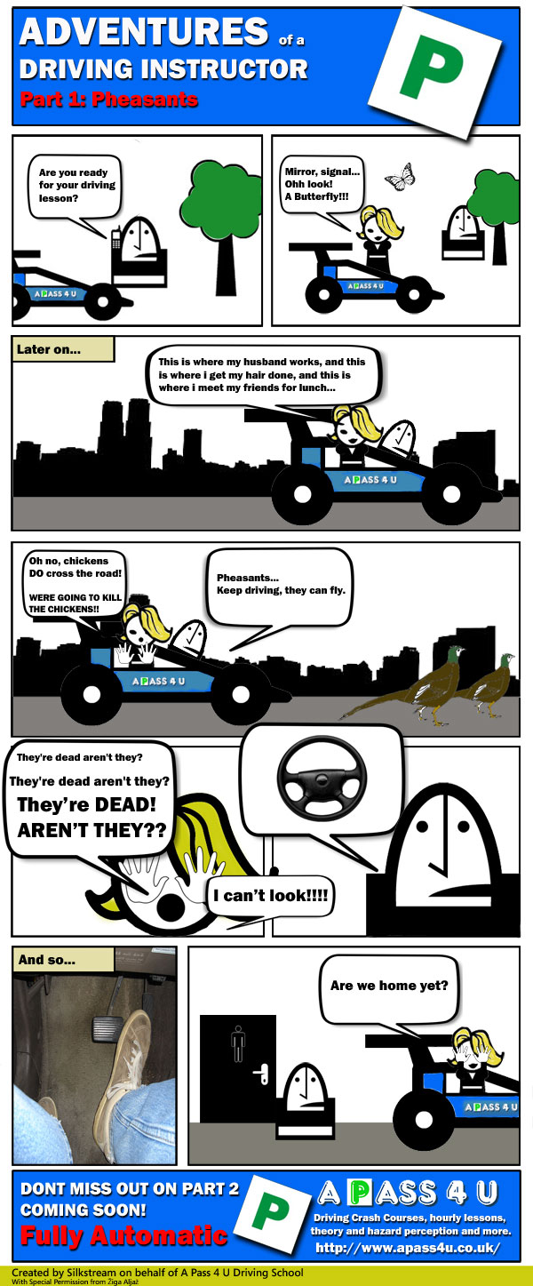 Adventures of a Driving Instructor comic strip